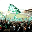 Portland Timbers vs. Seattle Sounders US Open Cup Round 3 on July 1, 2009, PGE Park, Portland, OR .  Photography by Liz Wade www.craigmitchelldyer.com 503.513.0550